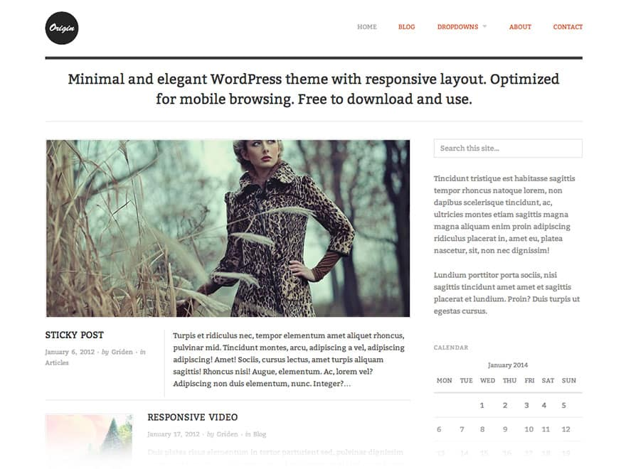 WordPress Themes free kostenlos Origin
